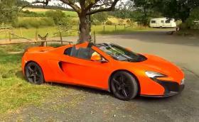 Магаре объркало McLaren 650S Spider за гигантски морков. Нанесло щети за 6000 долара