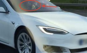Взеха книжката на шофьор на Tesla, возещ се в пътническата седалка