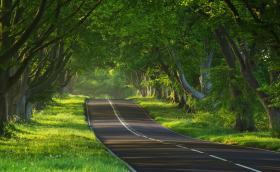 Колко километра минавате годишно? Вижте кои марки коли навъртат най-много километри