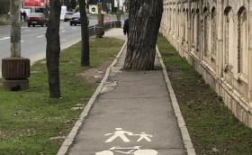Румъния строи 3000 км велоалеи за 120 млн. евро