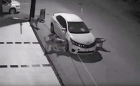 Кучета-вандали потрошиха кола в Турция. Видео
