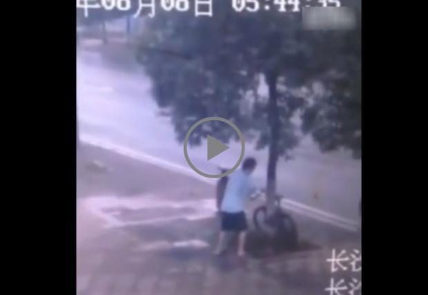 Няма. Такъв. Наглец. Крадец отряза дърво за 90 сек, за да открадне колело! Видео